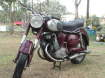 Enlarge Photo - PUCH 250sgs 1953